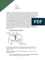 Del examen físico segmentario