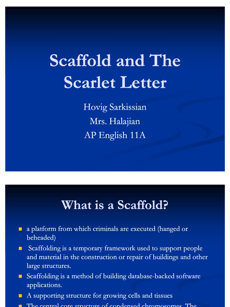 Scaffold | Tissue Engineering | The Scarlet Letter