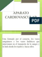 Aparato Cardiovascular[1]