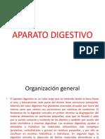 APARATO DIGESTIVO gallardua