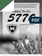 Sukkot to-Go - 5770