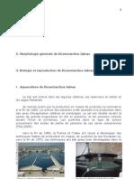 Mémoire Aspects Parasitaires Dicentrarchus labrax