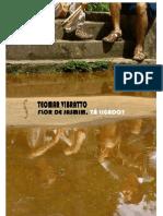 TEOMAR VIBRATTO - APRESENTAÇÃO