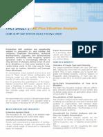 FactSheet RBEPlus-Situation Analysis ENG 1 2010