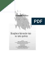 7280326-Caderno16-Ramo-Quimico