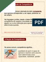 Disciplina Mapeamento de Competências - FGV 2010 - Slides para alunos