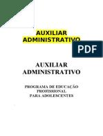 APOSTILA - AUXILIAR ADMINISTRATIVO -