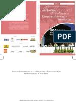 Serie DRS vol 11 - Relfexões sobre políticas de desenvolvimento territorial