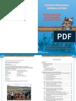 Proyecto Curricular Regional de Puno