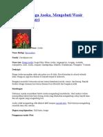 Manfaat Bunga Asoka
