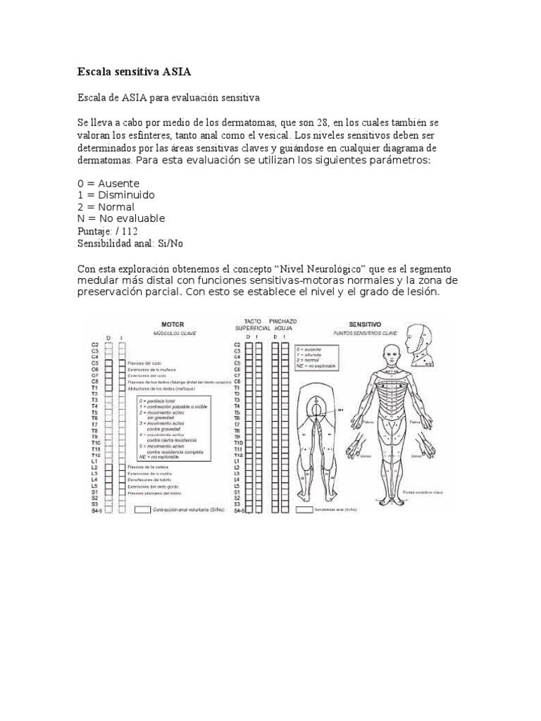 Hermosa Diagrama De Esfínter Galería - Imágenes de Anatomía Humana ...