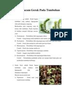 gerak-tumbuhan