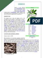 Cassava Characteristics - Ibwebsite (English)