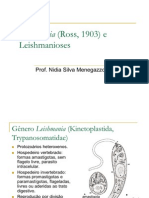 Leishmania_(Ross,_1903)_e_Leishmanioses