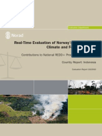 Real-Time Evaluation of NICFI - Indonesia Country Report
