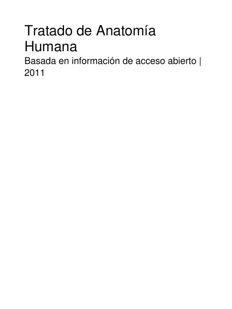 Tratado de anatoma humana fandeluxe Image collections