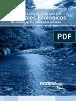 Introducción al Cálculo de Caudales Ecologicos - Endesa