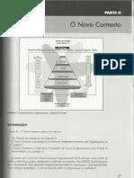 PLT Anhanguera - Comunicação e Comportamento Organizacional - Caps 4, 5 e 6