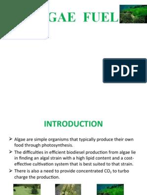 Ppt on Algae Fuel