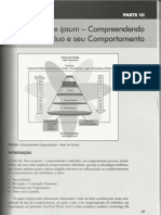 plt-comportamento_organizacional-parte3-cap7_8_9_e_10