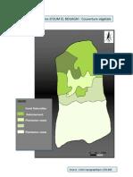 Carte N°(10)  Bassins d'OUM EL BOUAGHI  Couverture végétale