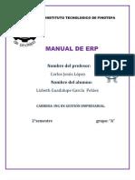 Manual de Open[1]