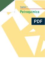 Capítulo 7 Petroquímica[1]