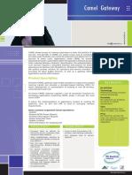 Camel Gateway PDF