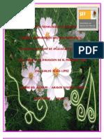 Software de Alicacion Ejecutivo[1]