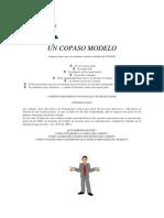 Un_COPASO_Modelo