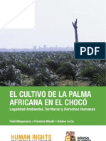 cultivopalmachoco