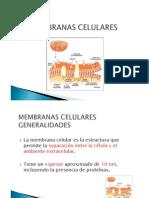 MEMBRANAS_CELULARES
