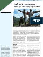Factsheet Biofuel En
