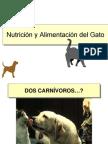 AlimentacionGato & Perro