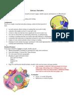 Module 1 Documents