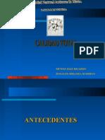 Calidad Total, Ricardo Munoz D, Rodrigo Rosales M, 2006-2