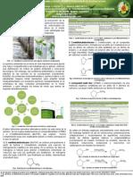 Poster Quimica Verde