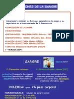 Teo n 5. Fisiologia de La Sangre. Prof.a.balaszczuk
