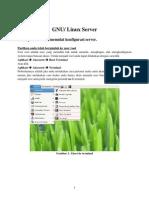 GNU Linux Server