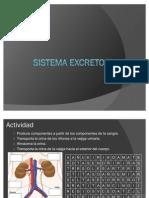 sistemaexcretor-100609164320-phpapp01