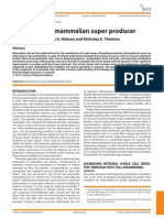 Engineering a Mammalian Super Producer