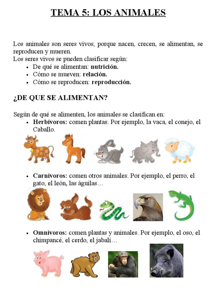 Tema animales conocimento 3 primaria - Como se aparean los elefantes ...