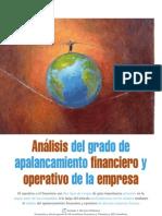 Apalancamiento Financiero y Operativo - Estrategia Financier A - Julio-Agosto 2010