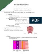 Aparato Respiratorio, análisis histológico