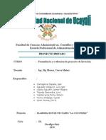 Proyecto, Nectares de Cocona