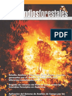 Incendios-forestales 10