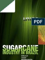 Sugarcane Industry in Brazil