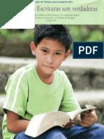 bosquejo primaria 2011