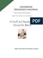 Perfil Del Maestro en Educacion Basica. Presentacion