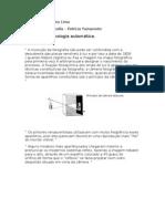Mística da homologia automática
